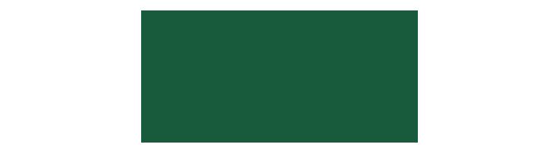 лого пони